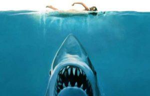 Lo squalo – Steven Spielberg